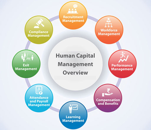 4 Faktor Untuk Mengevaluasi Human Capital Management Software